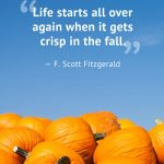 1500065547-fall-quotes-fitzgerald