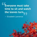 1500065922-fall-quotes-lawrence